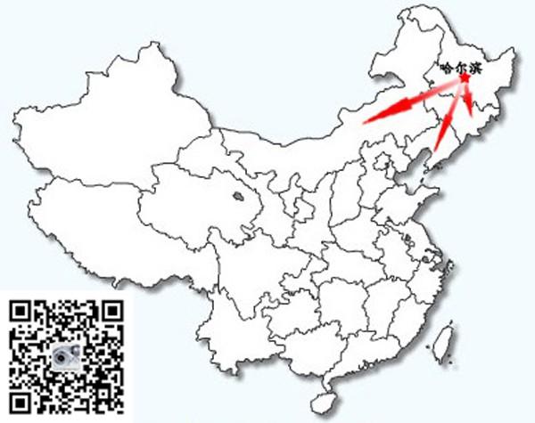 黑龙江贝尔国际贸易有限公司 -