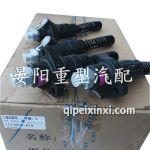 1111010-A12单体泵总成