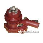 錫柴485水泵總成