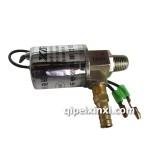 新林气喇叭电磁阀DF243-24V