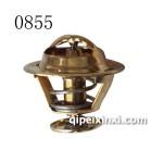 B54A3节温器