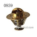 B54D5节温器