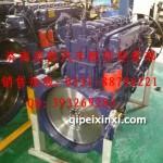 WP10增压器右置发动机总成