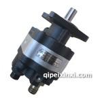 P5100TX侧翻专用齿轮泵