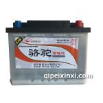 6-QTPE-60(640)駱駝蓄電池