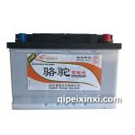 6-QTPE-70(700)骆驼蓄电池