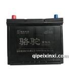 80D26-6-QW-70(590)駱駝蓄電池
