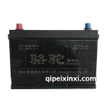 95D31-6-QWLZ-85(660)駱駝蓄電池