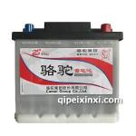 55134-6-QWLZ-51(480)骆驼蓄电池