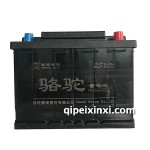 55530-6-QW-55(500)骆驼蓄电池