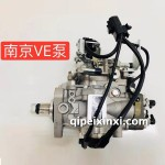 南京VE泵