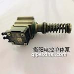 衡阳电控单体泵