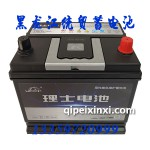 6-QW-60(550)XL理士蓄電池