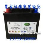 理士高端汽车电瓶CX23-10C655-AC