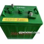 齐炬观光车3-D-210蓄电池258×182×315