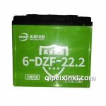振盟电动车专用6-DZF-22.2电瓶