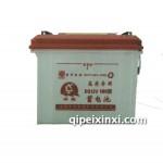 高寒专用DG12V180型电瓶蓄电池