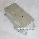 1013020-A12机油散热器芯