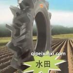CA10水田轮胎